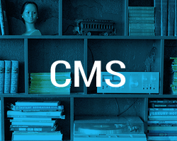 CMS small image